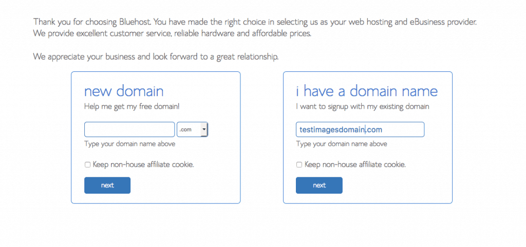 bluehost domain search name